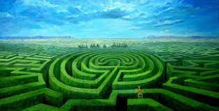 jardim das incertezas